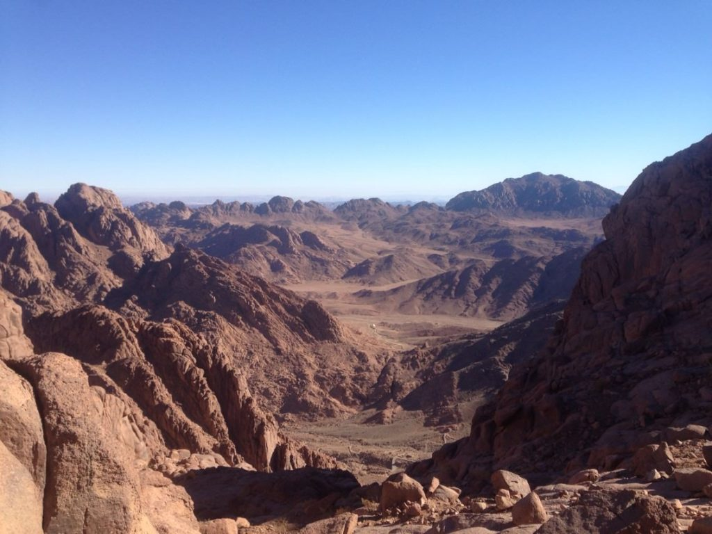 Research to Mount SINAI-1
