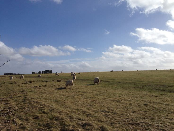 Research to Stonehenge-25