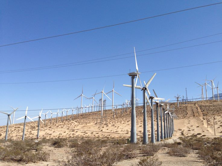 Trip to Huge Forest of Giant Wind Turbines-17