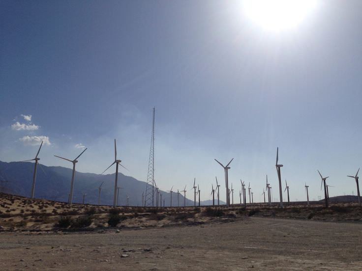 Trip to Huge Forest of Giant Wind Turbines-6